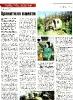 newspaper_3