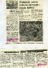 newspaper_4